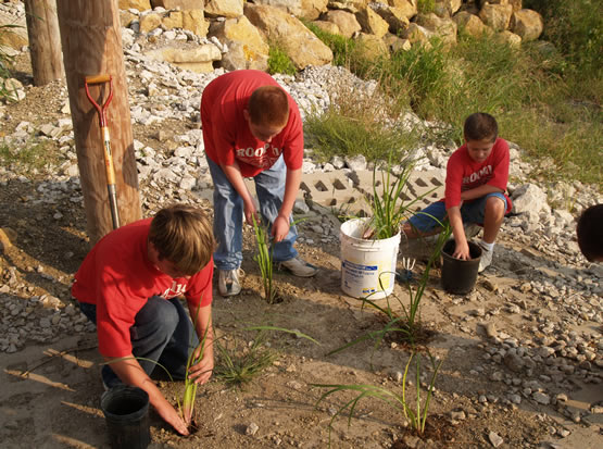 Three kids helping out by planting water lilies.