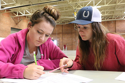 Two Agriculture students sitting at a table, working on some paperwork together.