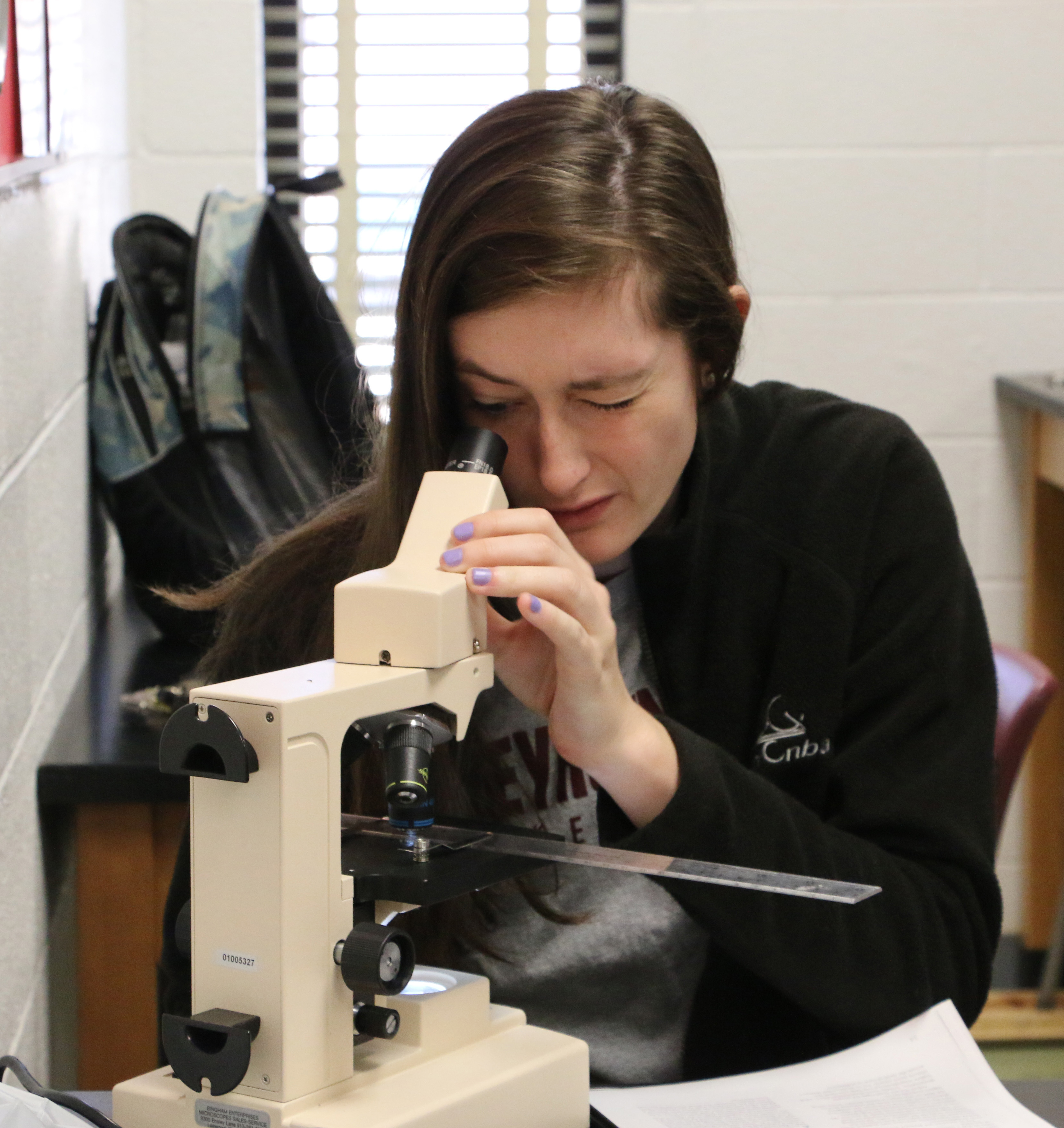 A student using a microscope in Biology class.