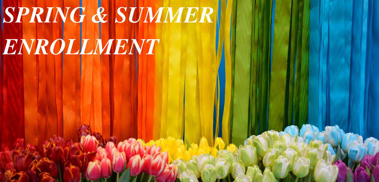 "picture of rainbow colored tulips and rainbow streamers with ""Spring & Summer Enrollment"" written in the top left corner"