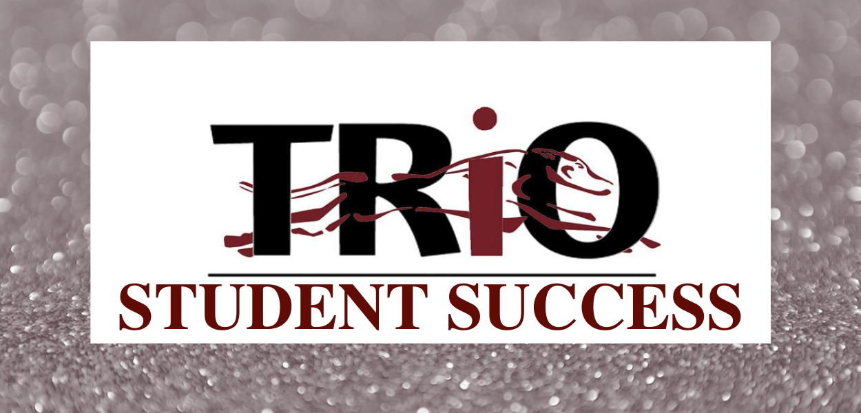 "silver background with the TRIO logo in the middle and ""student success"" written underneath it"