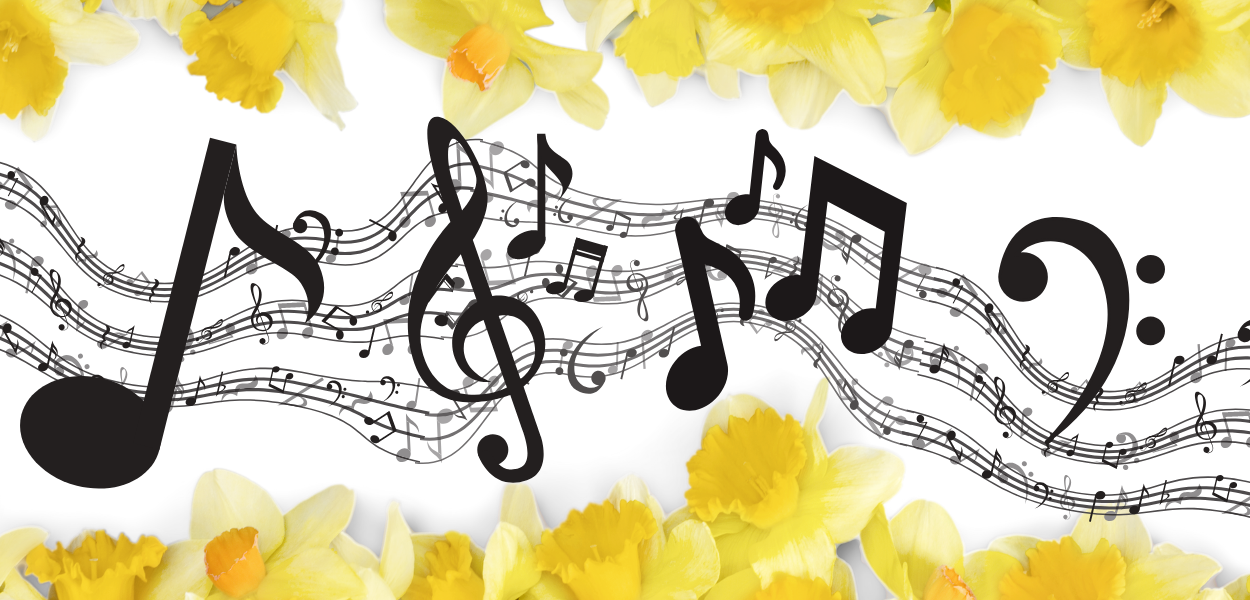 picture bordered with yellow daffodils with musical notes across the center