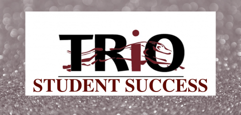 """silver background with the TRIO logo in the middle and """"student success"""" written underneath it"""