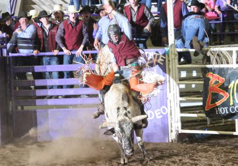 A student riding a bull